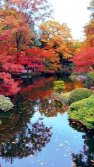 Cute Japanese Garden Design Ideas 41