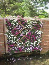 Cute Garden Fences Walls Ideas 35