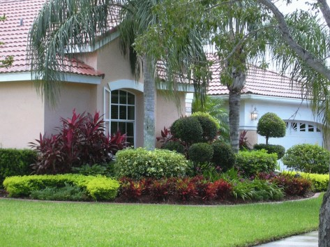 Cute Palm Gardening Ideas For Front Yard 36