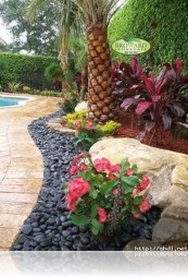Cute Palm Gardening Ideas For Front Yard 46
