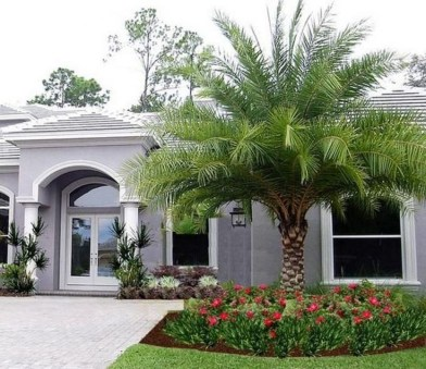 Cute Palm Gardening Ideas For Front Yard 51