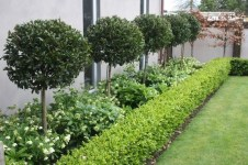 Delightful Landscape Designs Ideas 14