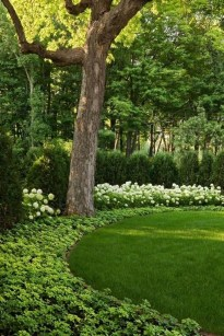 Delightful Landscape Designs Ideas 23