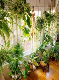Magnificient Indoor Decorative Ideas With Plants 13