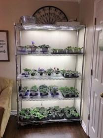 Magnificient Indoor Decorative Ideas With Plants 28