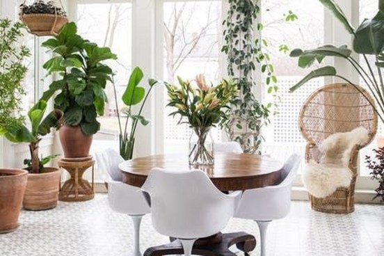 Magnificient Indoor Decorative Ideas With Plants 42