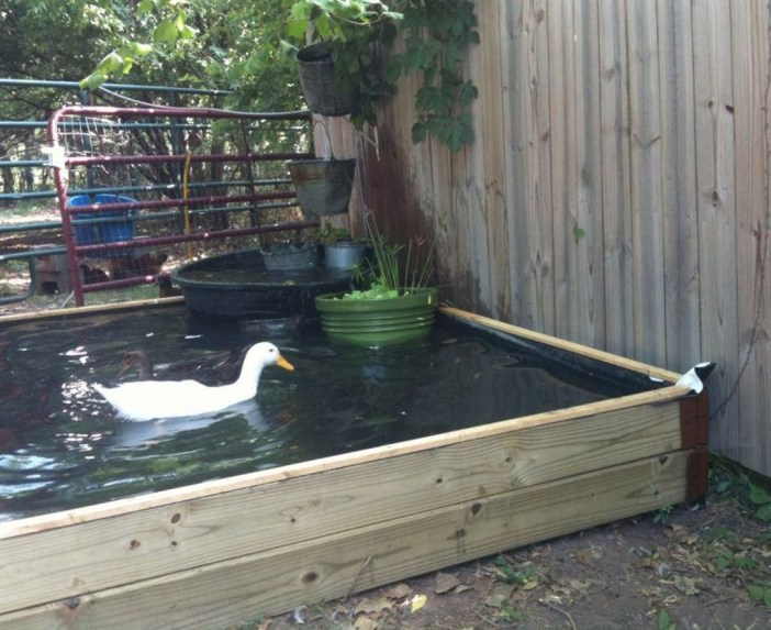 Comfy Diy Backyard Projects Ideas For Your Pets 43