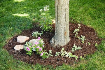 Adorable Flower Beds Ideas Around Trees To Beautify Your Yard 22