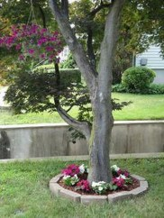 Adorable Flower Beds Ideas Around Trees To Beautify Your Yard 50