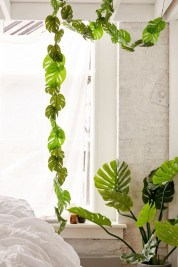 Rustic Houseplants Design Ideas That Are Safe For Animals 02
