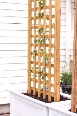 Affordable One Day Backyard Project Ideas To Try 27