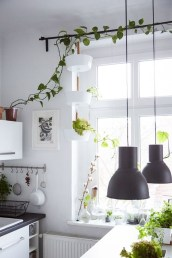 Lovely Window Design Ideas With Plants That Make Your Home Cozy 02