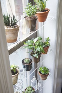 Lovely Window Design Ideas With Plants That Make Your Home Cozy 10