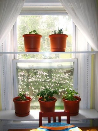 Lovely Window Design Ideas With Plants That Make Your Home Cozy 12