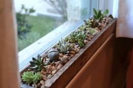 Lovely Window Design Ideas With Plants That Make Your Home Cozy 28