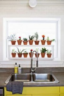 Lovely Window Design Ideas With Plants That Make Your Home Cozy 46