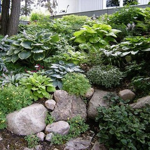 Cool Front Yard Rock Garden Ideas11