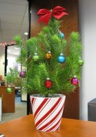Gorgeous Office Christmas Decoration Ideas07