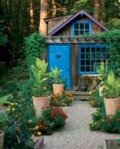 Awesome Shed Garden Plants Ideas12