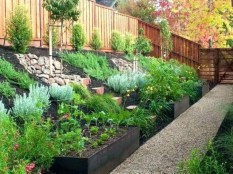 Smart Backyard Landscaping Ideas On A Budget46