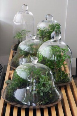 Amazing Glass Garden Ideas34