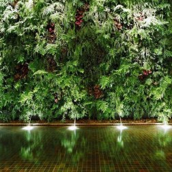 Cute Living Wall Décor Ideas For Indoor And Outdoor14