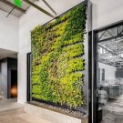 Cute Living Wall Décor Ideas For Indoor And Outdoor26