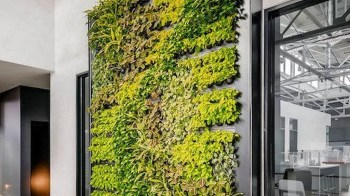 20+ Cute Living Wall Décor Ideas For Indoor And Outdoor