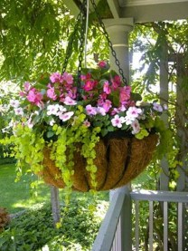 Wonderful Flower In Pots Ideas For Your Window02