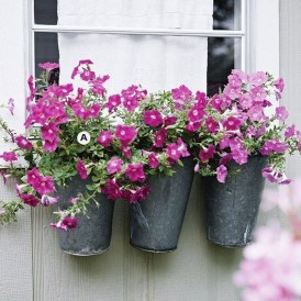 Wonderful Flower In Pots Ideas For Your Window10