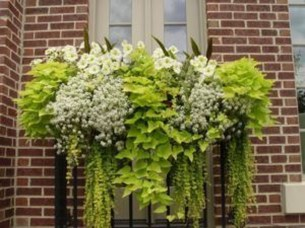 Wonderful Flower In Pots Ideas For Your Window24