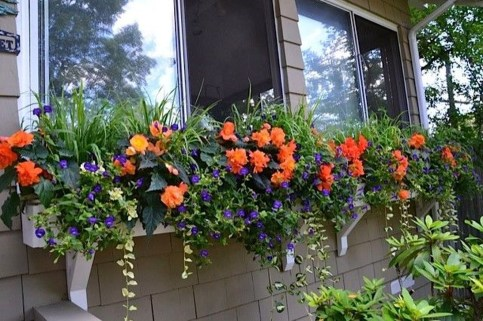 Wonderful Flower In Pots Ideas For Your Window33