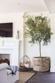 Awesome Tree Interior Design Ideas To Apply Asap22