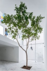 Awesome Tree Interior Design Ideas To Apply Asap40