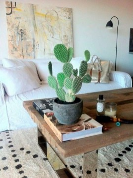 Cool Small Cactus Ideas For Interior Home Design29