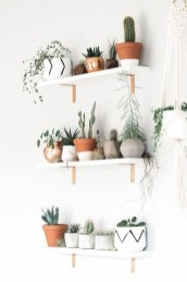 Cool Small Cactus Ideas For Interior Home Design40