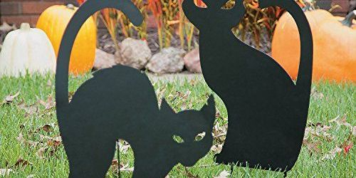 Inspiring Black Cat Halloween Decorations Ideas