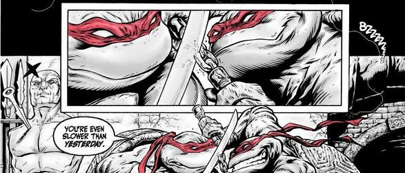 HeadHunta' Studios/Arena Comics pays Tribute to TMNT!