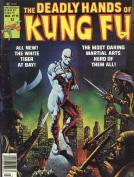 The Deadly Hands of Kung Fu InvestComics