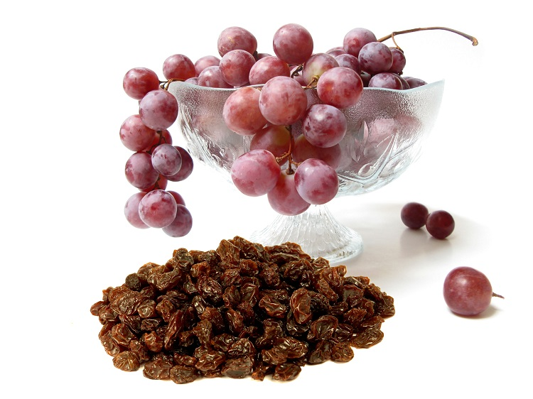 Grapes or Rasins