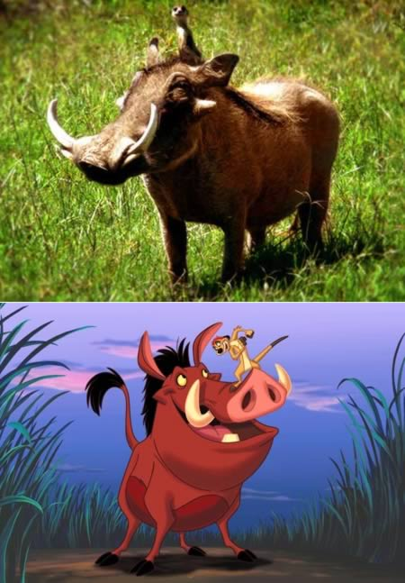 Timon and Pumba from Lion King
