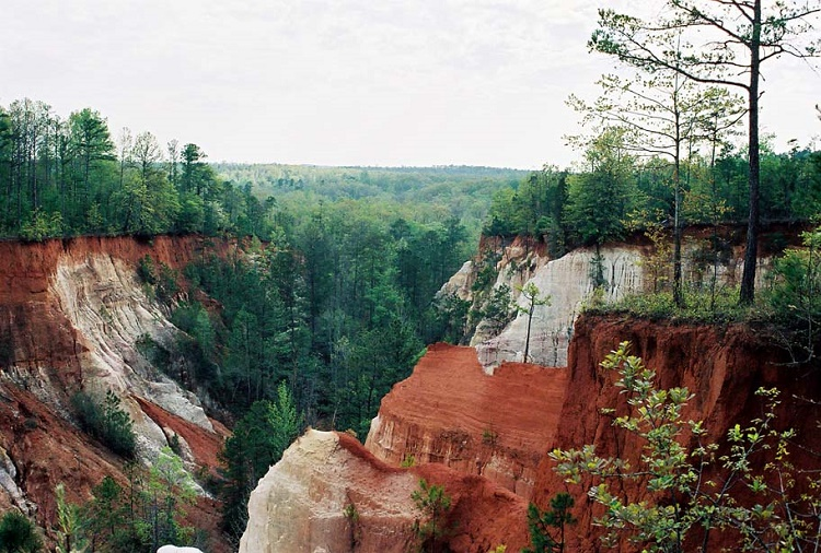 Providence Canyon, Georgia, USA