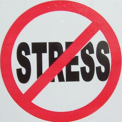 Stress Awareness Day