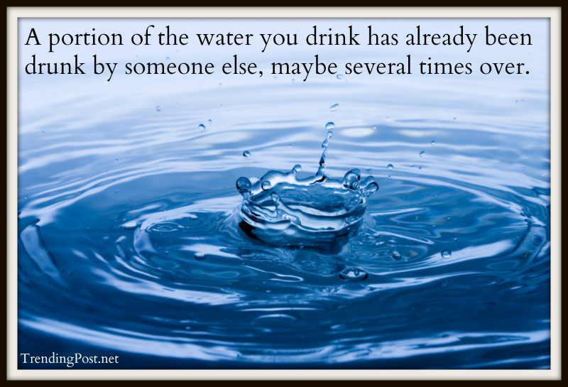 A portion of the water you drink has already been drunk by someone else, maybe several times over.