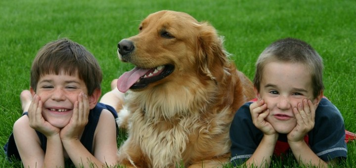 These Are the Best Dogs Breeds for Children