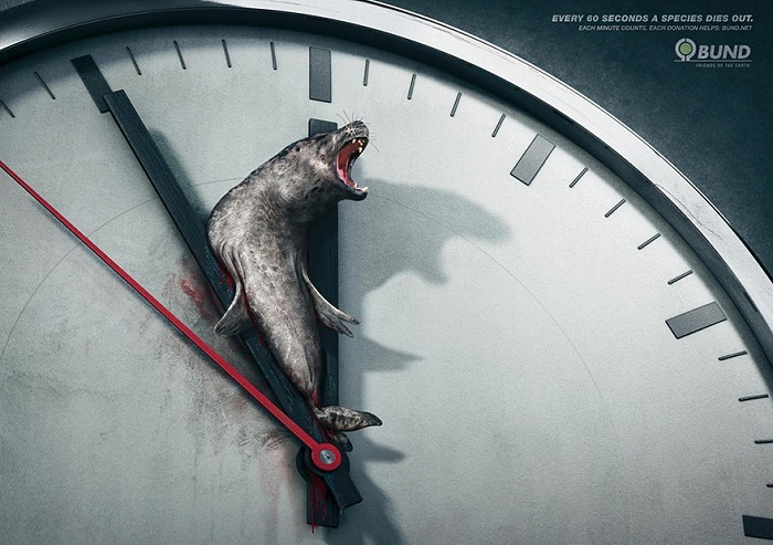 Each minute counts every minute a species dies out