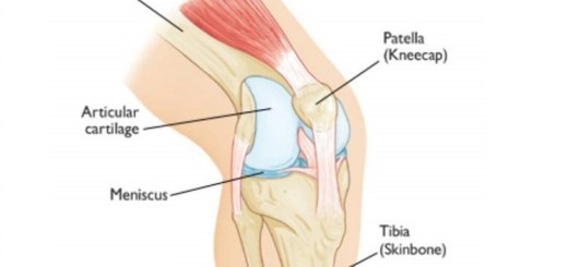 Do you have pain in knees; take a look at the causes and treatments!