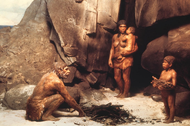 Does this mean Neanderthals were more superior?