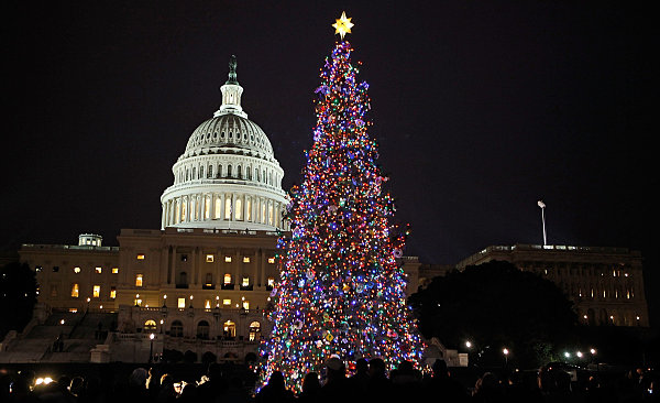 Christmas Tree at West Side of the US Capital Building, Washington DC