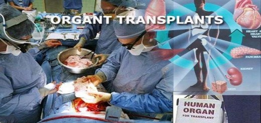10 Lesser known facts about organ transplantation
